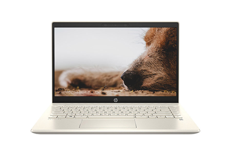 Laptop HP Pavilion 14-dv0013TU (2D7B8PA)/ Gold/ Intel Core i7-1165G7 (up to 4.70 Ghz, 12 MB)/ RAM 8GB DDR4/ 512GB SSD/ Intel Iris Xe Graphics/ 14 inch FHD/ 3 Cell/ Win 10H/ 1 Yr
