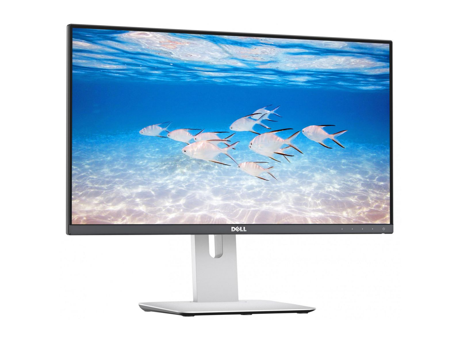 Màn hình Dell E2420H 24 Inch FHD (1920 x 1080) LED Backlit LCD IPS