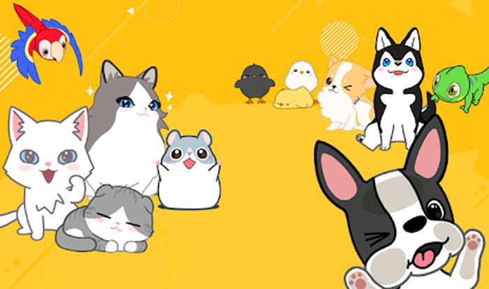 Hellopet - Game mô phỏng chăm sóc thú cưng cực hay
